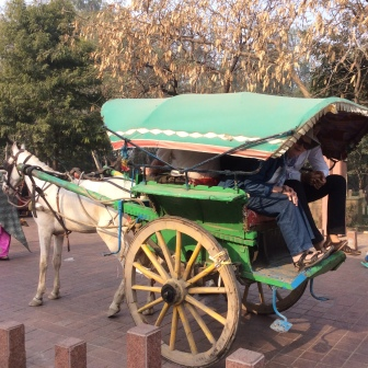 Horse Cart Ride India