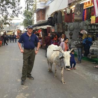 Market Walking Tour India